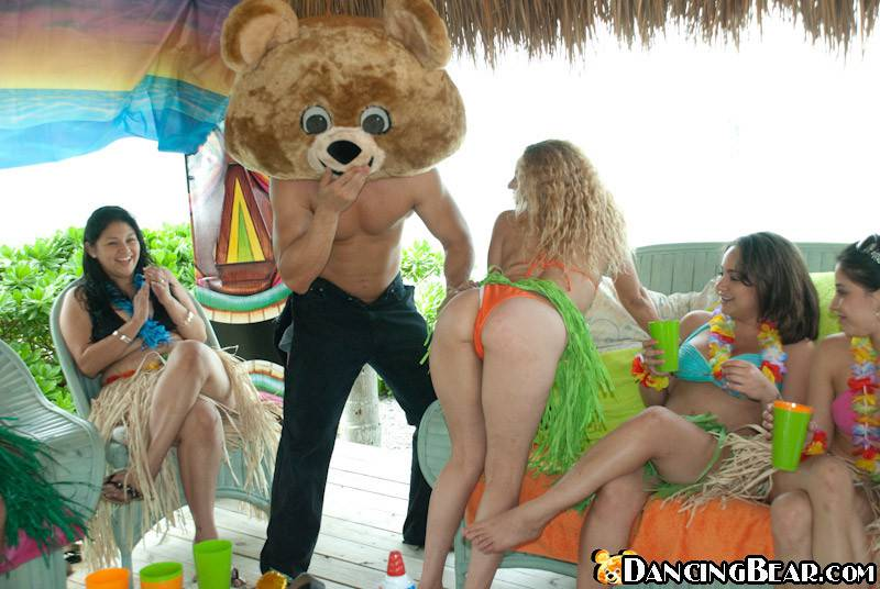 dancing-bear-discount